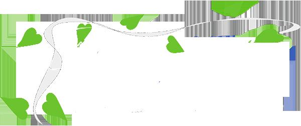 Agua y Jardín empresa de jardinería integral en A Coruña, paisajismo y diseño de estanques