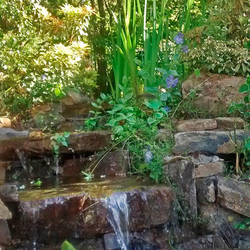 Somos especialistas en integrar el agua en el diseño de jardines
