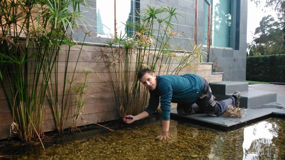 Agua y Jardín, cuidado y mantenimiento de jardines